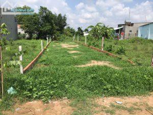 Ngộp tiền bán lô đất xã Phước Hiệp-Củ Chi, hẻm 1/Trung Viết,137m2, sổ riêng, 900 triệu
